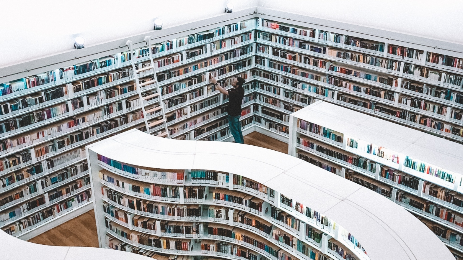 Man in library with white, wave-like shelves.